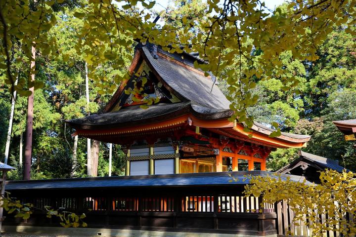 秋の八幡宮